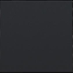 Blindplaat kabeluitvoer + trekontlasting Black Coated 161-76001