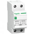 R9F64216-Automaat 2P 16A-Schneider